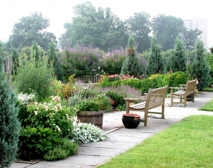 The Benefits Of Sensory Gardens In Care Homes