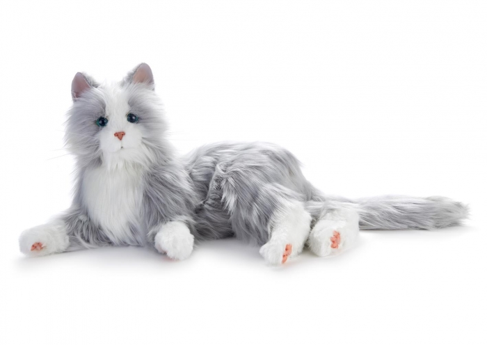 Silver Cat photo 2