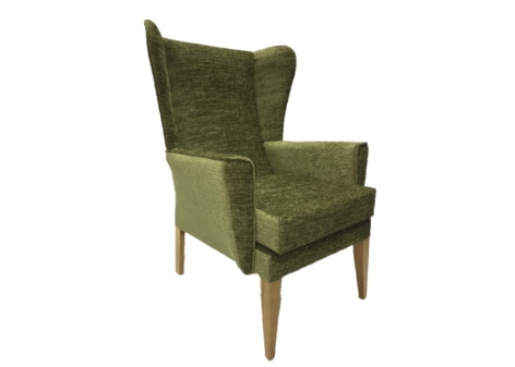 ALBION Lounge Chair in Agua Juno Lime Fabric